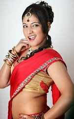 Indian Actress Haripriya Hot Sexy Images Set-2  (70)