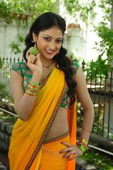 Indian Actress Haripriya Hot Sexy Images Set-1  (85)