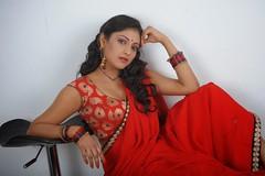 Indian Actress Haripriya Hot Sexy Images Set-2  (64)