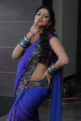 Indian Actress Haripriya Hot Sexy Images Set-1  (89)
