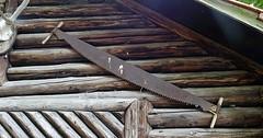 """Die Säge. Die Sägen. Das ist eine Zweimann-Schrotsäge, sie wird von Holzfällern und Zimmerleuten verwendet. Mit ihr kann man Bäume fällen. • <a style=""""font-size:0.8em;"""" href=""""http://www.flickr.com/photos/42554185@N00/36165943336/"""" target=""""_blank"""">View on Flickr</a>"""