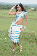 Indian Actress Haripriya Hot Sexy Images Set-1  (17)