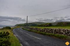 Scotland -7