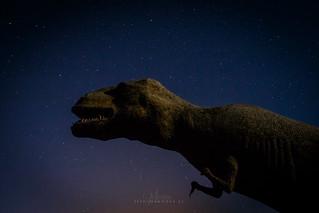 Dinosarius III