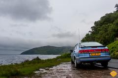 Scotland -8