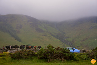 Scotland -10