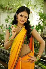 Indian Actress Haripriya Hot Sexy Images Set-1  (20)