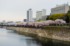 Osaka Castle Surrounding