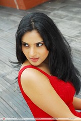 Indian Actress Ramya Hot Sexy Images Set-1 (35)