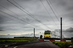 Bulskamp (Veurne)