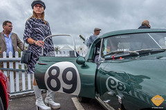 Goodwoodrevival cinecars-209