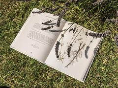 Echappées du livre