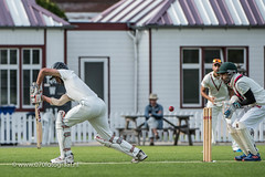 070fotograaf_2017082020170820_Cricket HCC1 - ACC 1_FVDL_Cricket_3823.jpg