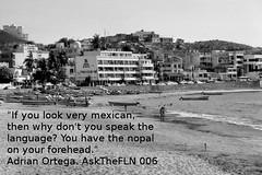 Ken's Take Ask the FLN Episode 006