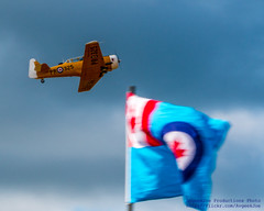 HARVARD FLYING OVER THE RCAF STANDARD