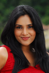 Indian Actress Ramya Hot Sexy Images Set-1 (1)