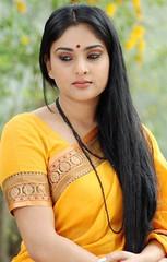 Indian Actress Ramya Hot Sexy Images Set-1 (47)