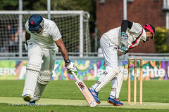070fotograaf_2017082020170820_Cricket HCC1 - ACC 1_FVDL_Cricket_3375A.jpg