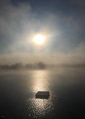"Jim Anderson - Sunrise on Little York Lake <a style=""margin-left:10px; font-size:0.8em;"" href=""http://www.flickr.com/photos/9089158@N06/36680863794/"" target=""_blank"">@flickr</a>"