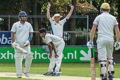070fotograaf_2017082020170820_Cricket HCC1 - ACC 1_FVDL_Cricket_3774.jpg