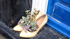 Shoes on the Doorstep