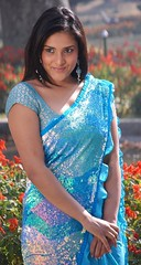 Indian Actress Ramya Hot Sexy Images Set-1 (51)