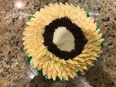 Eclipse Cake