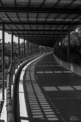 Punto de fuga, Parque de San Juan, Telde, Gran Canaria...