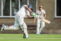 070fotograaf_2017082020170820_Cricket HCC1 - ACC 1_FVDL_Cricket_3502.jpg