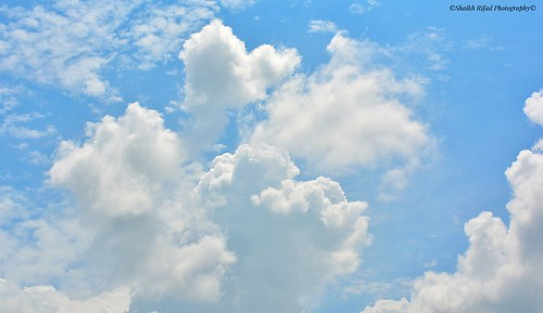 nikon skydiving jackgilinsky skyline skyrim skylover worldbestsky blueberry rsasky clearskys skysultans skycaptures mondayblues husky instasky skydive photography bluejays blues sky nightsky skyporn huskylove clearsky fabskyshots skysnappers redwhiteandblue cnblue huskypuppy blueheeler photograph skymastersfamily blueberries bluenose skyscraper blueyes thinblueline blue skyscrapers beautifulsky iskyhub huskygram lukeskywalker redsky bluesky skyperfection amazing whisky bluehair goblue skyviewers blueskies skywatcher skystylesgf siberianhusky skypainters bluemoon instaskylovers bangladesh blueeyes photo click skylovers bluewater russianblue