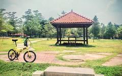 https://foursquare.com/v/paya-indah-wetlands/4cddf128df986ea8f3ddd816  #travel #holiday #travelMalaysia #holidayMalaysia #Malaysia #garden #green #旅行 #度假 #马来西亚度假 #马来西亚旅行 #马来西亚 #Asia #亚洲 #公园 #绿色 #grass #tree #草 #树 #Resort #度假村