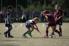 Hockeyshoot20170902_Wapenschouw hdm - Klein Zwitserland_FVDL__6137_20170902.jpg