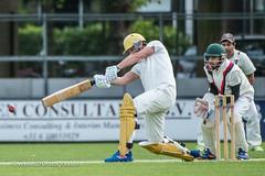 070fotograaf_2017082020170820_Cricket HCC1 - ACC 1_FVDL_Cricket_3675.jpg