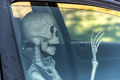 always use your seatbelt!