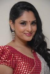 Indian Actress Ramya Hot Sexy Images Set-1 (60)