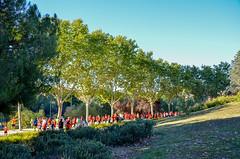 0217 - I Carrera Solidaria H la Paz