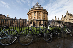Ultra wide Oxford.