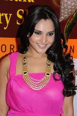 Indian Actress Ramya Hot Sexy Images Set-1 (86)