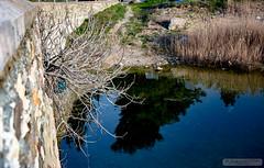 Kılavuzlu Bridge
