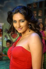 Indian Actress Ragini Dwivedi  Images Set-1   (25)