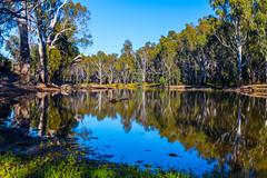River murray lagoon