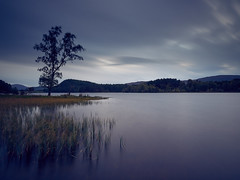 "Loch Pityoulish Dusk • <a style=""font-size:0.8em;"" href=""http://www.flickr.com/photos/26440756@N06/37610375472/"" target=""_blank"">View on Flickr</a>"
