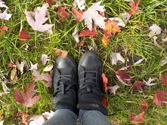 "TIlda36 • <a style=""font-size:0.8em;"" href=""http://www.flickr.com/photos/145215579@N04/37893357781/"" target=""_blank"">View on Flickr</a>"