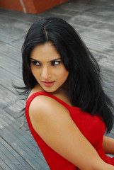Indian Actress Ramya Hot Sexy Images Set-1 (7)