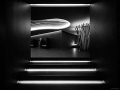 Savoy Saccharum Architecture - Calheta, Madeira