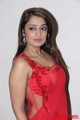 Kannada Times_Nikita Thukral_098