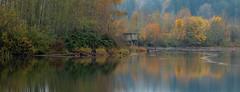 Mill Pond Shack Pano