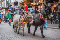 070fotograaf_20171118_Intocht Sinterklaas_FVDL_Evenement_4459.jpg