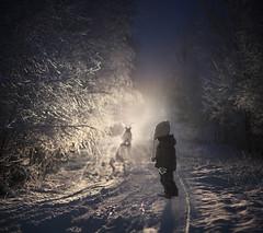 ..frozen mist..