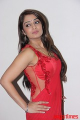 Kannada Times_Nikita Thukral_095